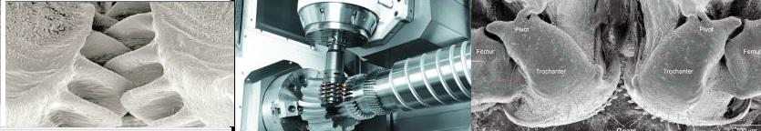 gears composit